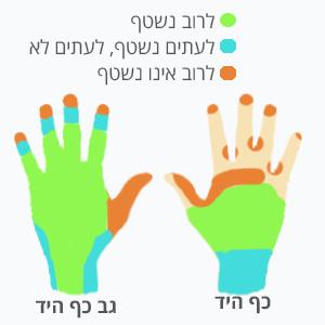 שטיפת ידיים אזורים