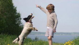 מה בריא - כלב ותינוק