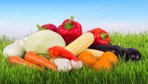 צמחונות - מה בריא, מגזין בריאות